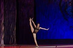 Этот вечный сказ балета Стоковая Фотография RF