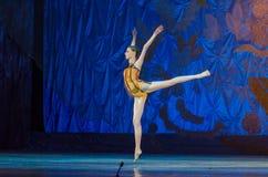 Этот вечный сказ балета Стоковое Фото