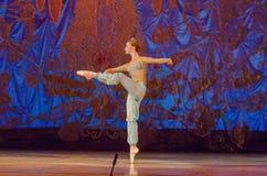 Этот вечный сказ балета Стоковые Фото