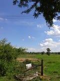 Этот взгляд неба на моем доме Стоковое Фото
