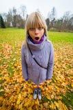 Это действительно осень? Стоковое Изображение RF