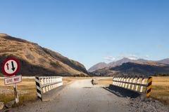 Это путь овца идет стоковые фото