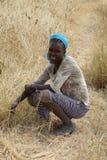 Эфиопская женщина, Эфиопия, Африка Стоковое Фото
