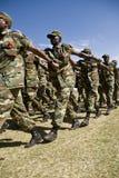 Эфиопский маршировать воинов армии Стоковое Изображение