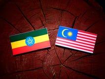 Эфиопский флаг с малайзийским флагом на изолированном пне дерева Стоковые Изображения RF