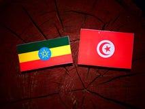Эфиопский флаг с тунисским флагом на изолированном пне дерева Стоковое Фото