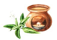 Эфирное масло вербены лимона и лампа ароматности Иллюстрация руки акварели вычерченная изолированная на белой предпосылке бесплатная иллюстрация