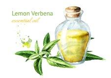 Эфирное масло вербены лимона E иллюстрация вектора