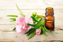 Эфирное масло гвоздики абсолютное и розовые цветки на деревянном столе Стоковые Фото