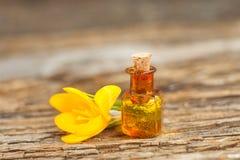 Эфирное масло крокуса в красивой бутылке на таблице Стоковое Фото