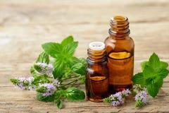 Эфирное масло пипермента и свежие цветки пипермента на деревянном столе Стоковая Фотография RF