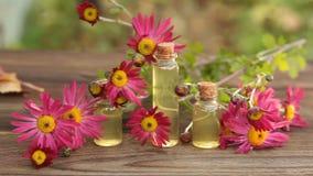 Эфирное масло хризантемы в бутылке на таблице сток-видео