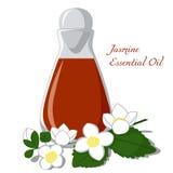 Эфирное масло жасмина Стоковое Изображение