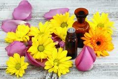 Эфирное масло от сладостных пахнуть цветков Стоковые Фото