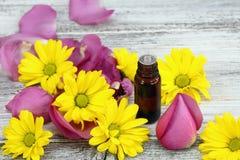 Эфирное масло от сладостных пахнуть цветков Стоковые Изображения RF
