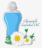 Эфирное масло стоцвета Стоковое Изображение