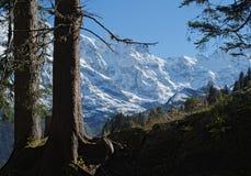 Эффектные горные виды около городка Murren (Berner Oberland, Швейцарии) Стоковые Фотографии RF