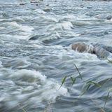 Эффектные речные пороги whitewater Стоковое Фото
