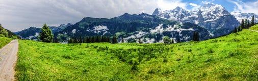 Эффектный панорамный взгляд Eiger, Monch, гор Jungfrau от Murren-Gimmelwald отстает, швейцарские горные вершины, Bernese Oberland стоковые изображения rf