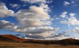 Эффектный пейзаж злаковика Внутренней Монголии Стоковое Изображение