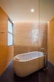 Элегантная ванная комната с ванной стоковые изображения rf
