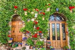 Элегантная деревянная дверь стоковые фотографии rf