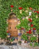 Элегантная деревянная дверь стоковое фото