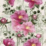Элегантная картина вектора цветка с цветками пиона Год сбора винограда provan иллюстрация штока