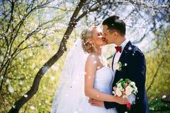 Элегантная молодая счастливая пара свадьбы сидит на зеленой траве дальше Стоковые Фото