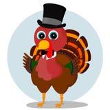 Элегантная Турция Стоковое фото RF
