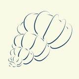 Элегантной нарисованный рукой эскиз seashell Стоковая Фотография RF