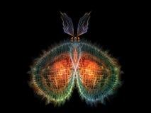 Элегантность бабочки бесплатная иллюстрация