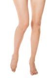 Элегантные длинные чуть-чуть женские ноги стоковое изображение rf