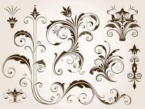 Элегантные флористические установленные орнаменты Стоковая Фотография RF