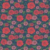 Элегантный безшовный цветочный узор с розами Стоковое Изображение