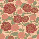 Элегантный безшовный цветочный узор с розами Стоковые Фотографии RF