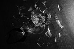 Элегантный бокал сломленн на темной предпосылке Стоковое Фото