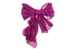 Элегантный шарф Стоковые Фото