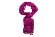 Элегантный шарф Стоковые Фотографии RF