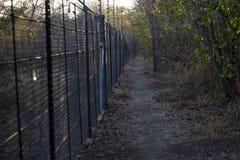 Электризуемый проволочный забор с дорожкой в природе - национальном парке Kruger Стоковые Изображения RF