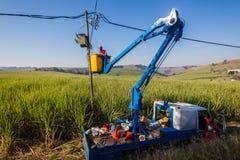 Электрик ремонтирует подъем тележки трансформатора Стоковая Фотография RF