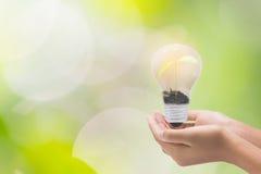 Электрическая лампочка в руке женщины, реалистическом изображении фото Поверните дальше вольфрам Стоковая Фотография