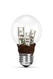 Электрическая лампочка и растущие долларовые банкноты Стоковое фото RF