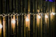 Электрическая лампочка на бамбуке Стоковая Фотография RF