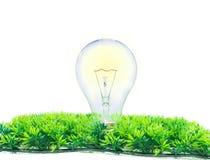 Электрическая лампочка раскаления на белизне Стоковое фото RF