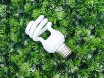 Электрическая лампочка раскаления на искусственной траве Стоковые Изображения RF