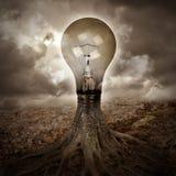 Электрическая лампочка растя идея в природе Стоковые Фото