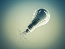 Электрическая лампочка с корнями и вытекаенная на значке с корнями Стоковая Фотография RF