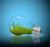 Электрическая лампочка, экологическая концепция Стоковое Изображение