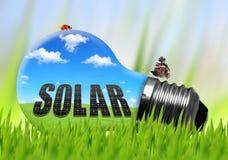 Электрическая лампочка Eco в траве Стоковые Изображения